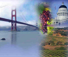 multi image picture san francisco wine Cherryroad Technologies