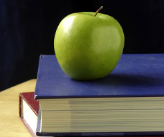 public schools post image with books and apple - Cherryroad Technologies
